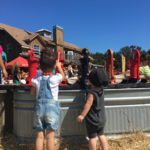 Family Fun on Sweetfields Farm