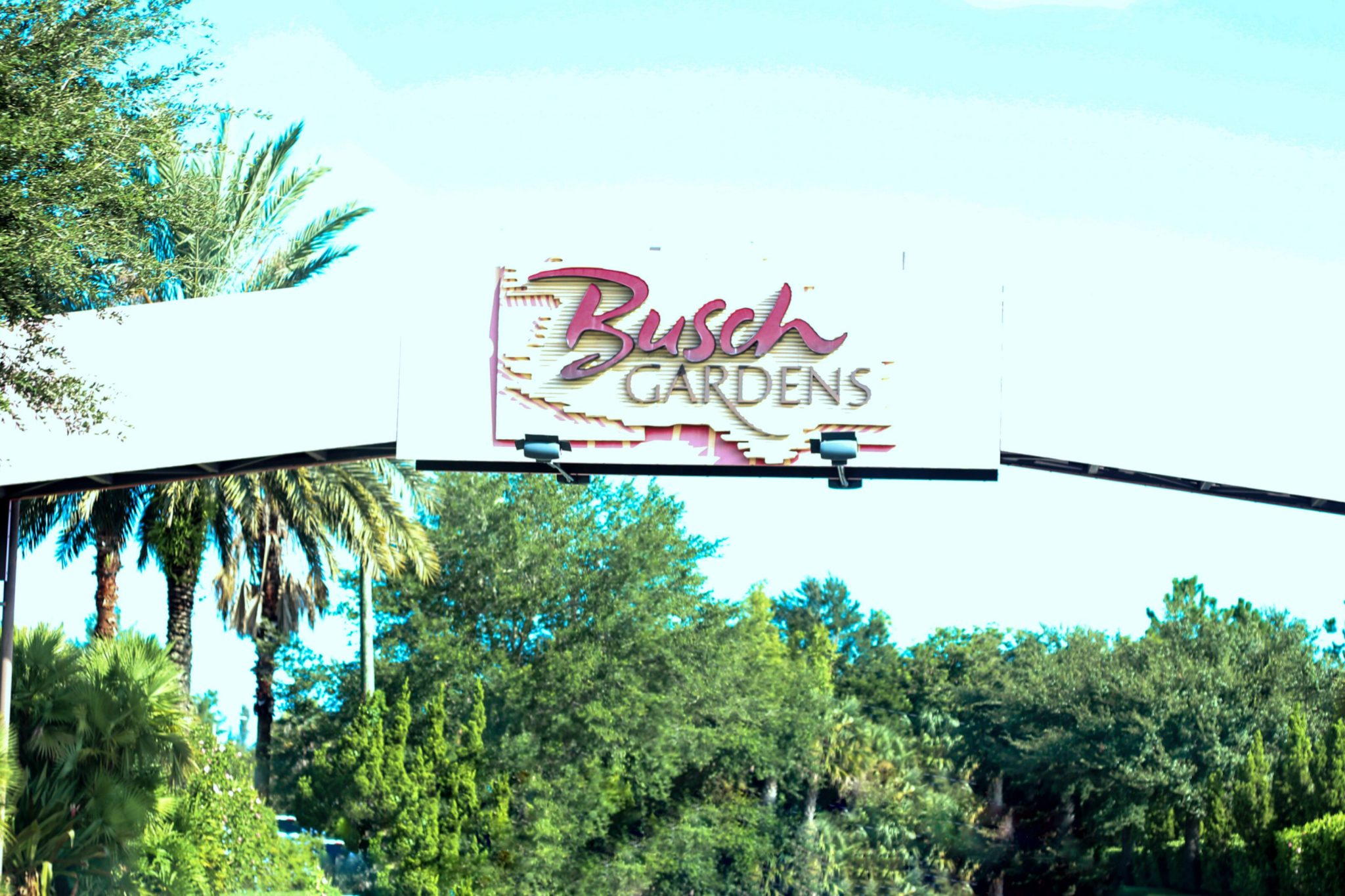 KID FRIENDLY ATTRACTIONS IN BUSCH GARDENS TAMPA