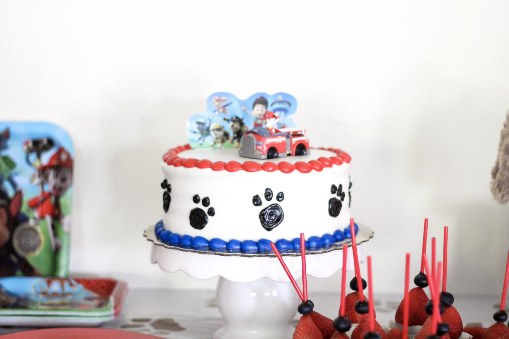 Paw Patrol Party Birthday Party Theme Summer Birthday