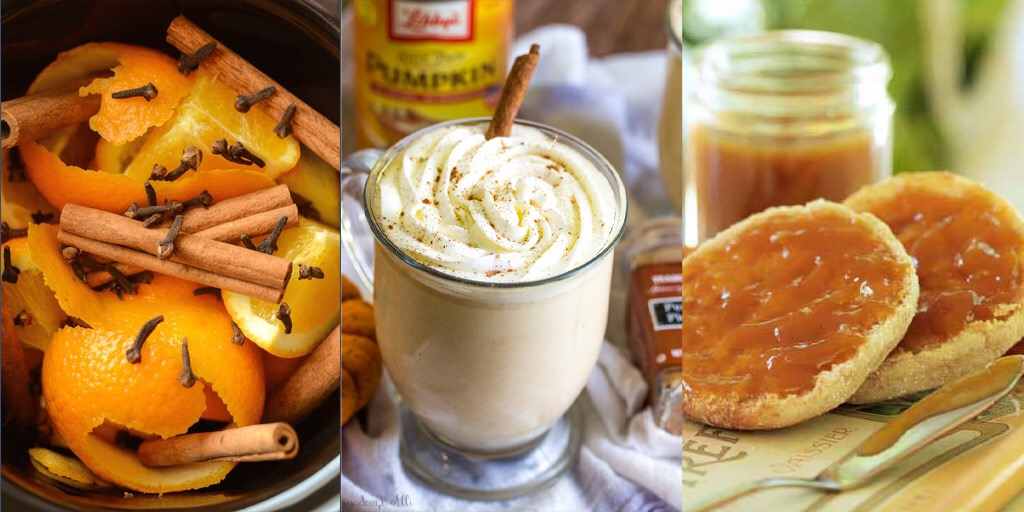 17 COMFORTING FALL SLOW COOKER RECIPES