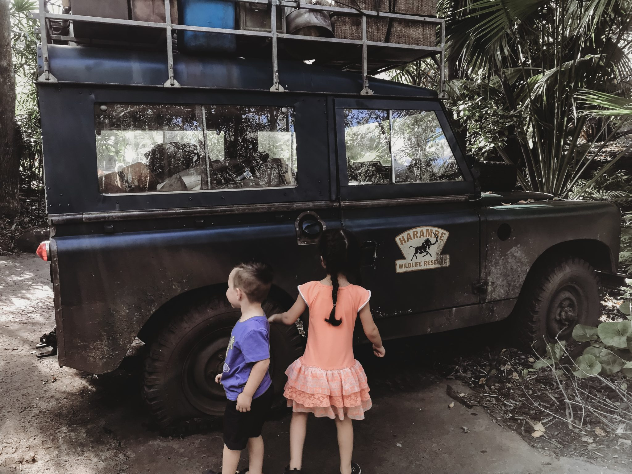 Guide to Animal Kingdom for Toddlers and Preschoolers, Disney's Animal Kingdom Safari