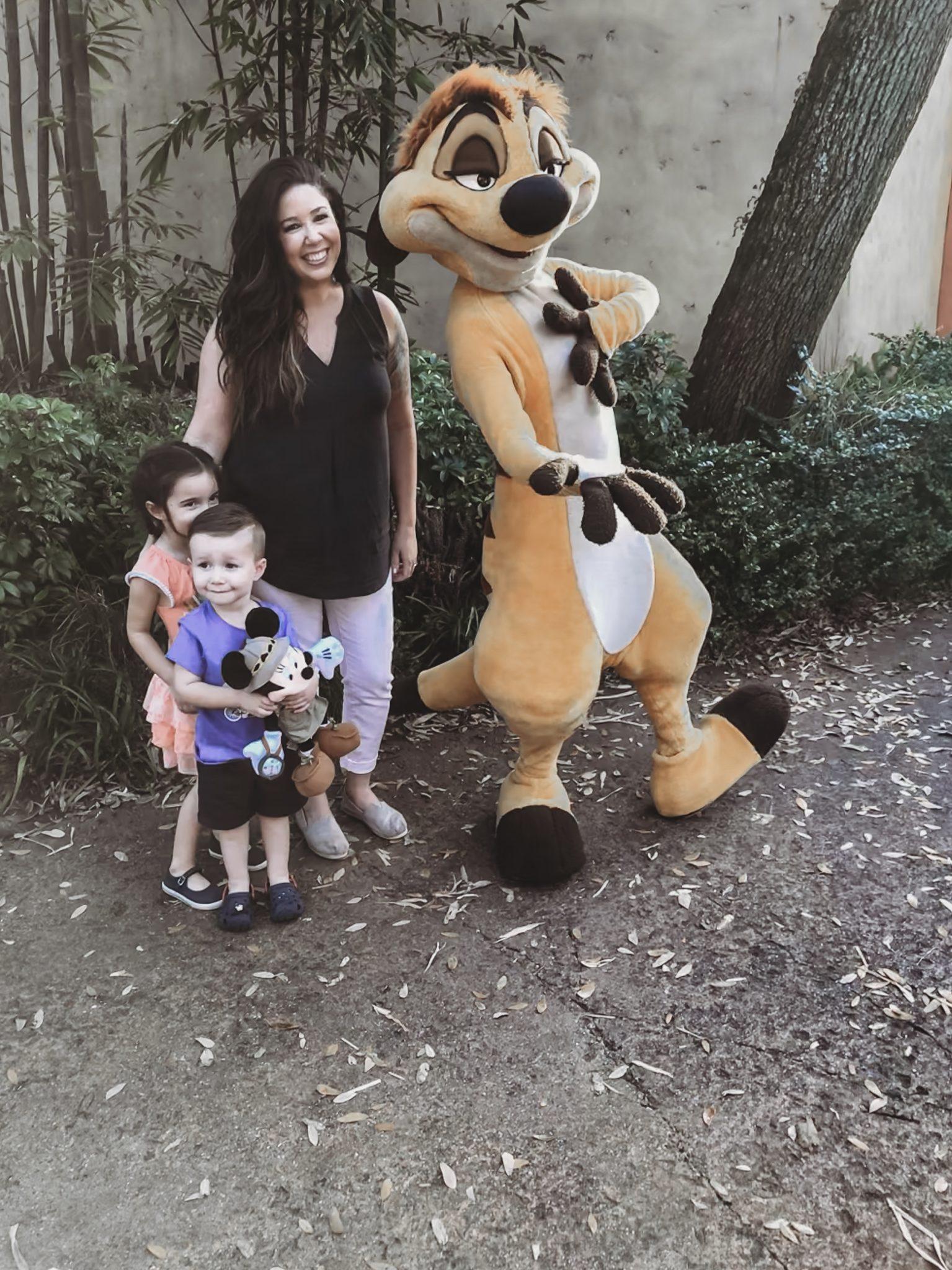 Guide to Animal Kingdom for Toddlers and Preschoolers, Disney's Animal Kingdom Safari