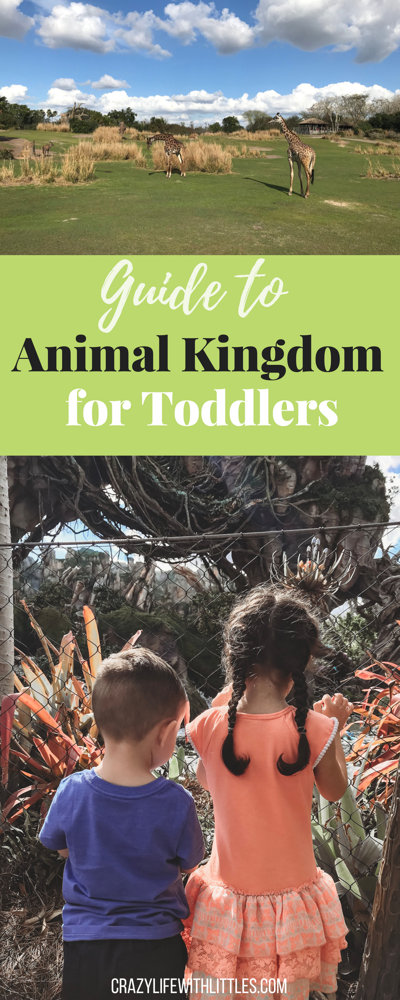 tips for taking toddlers to Animal Kingdom, where to go in Animal Kingdom with toddlers and preschoolers, a guide to Animal Kingdom for kids