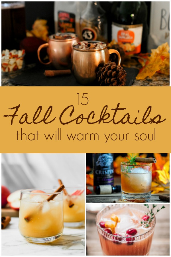 Fall Cocktails, pumpkin cocktails, apple drinks, boozy cider, spiked cider, #spikeddrinks #drinkrecipes, buttered rum, hot apple cider