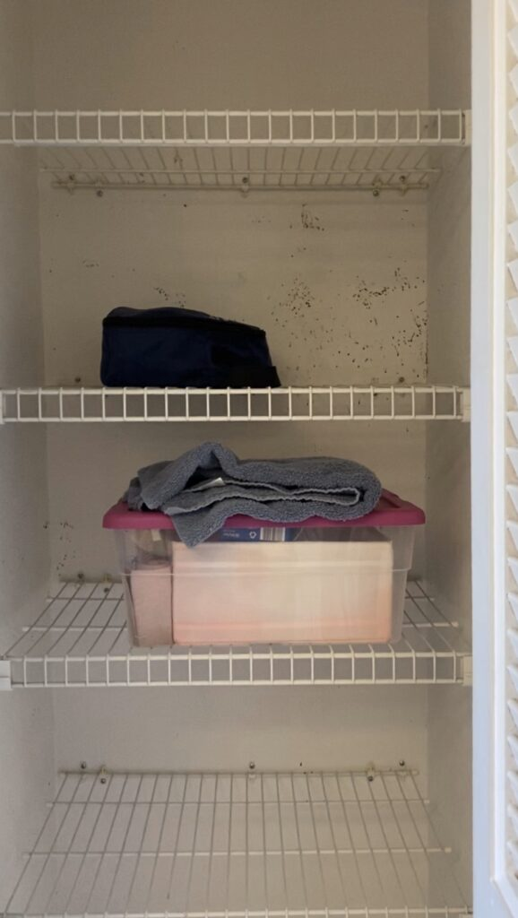 linen closet overhaul before photo
