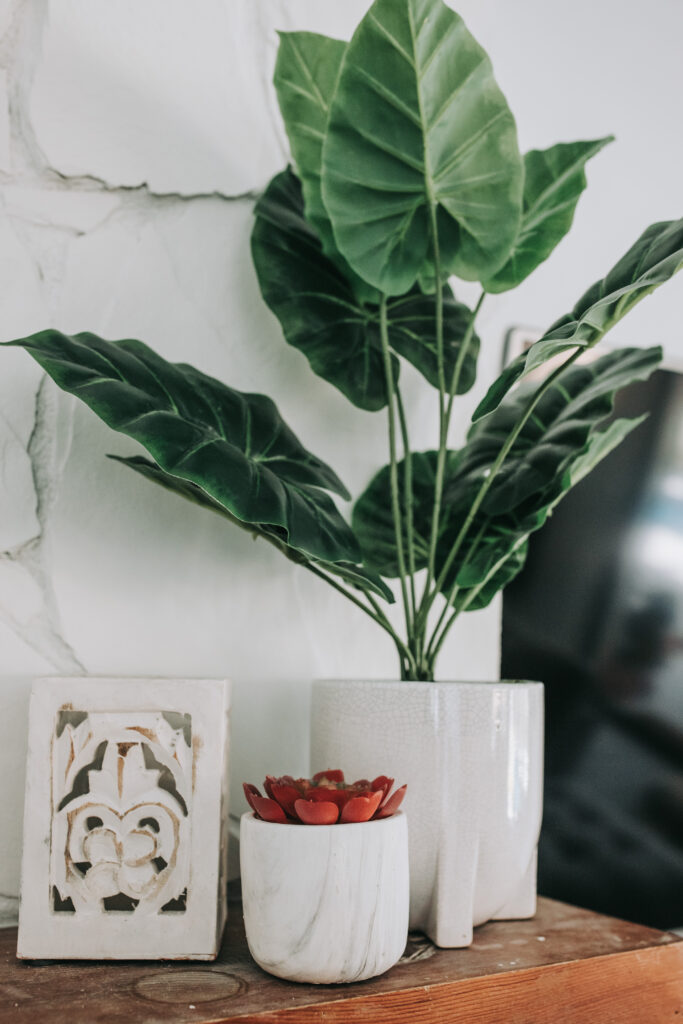 white home decor for summer, summer home decor trends, faux plants, bealls outlet home decor finds