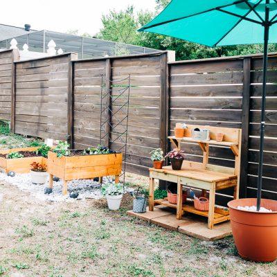 Building a Beginner Garden from Scratch